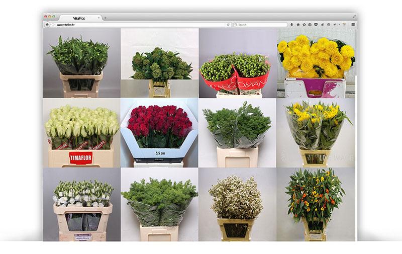 vita-flos-web-shop