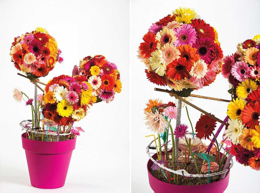 Uvoz i veleprodaja cvijeća