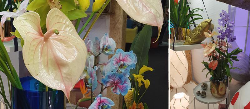 uvoz-veleprodaja-cvijeca