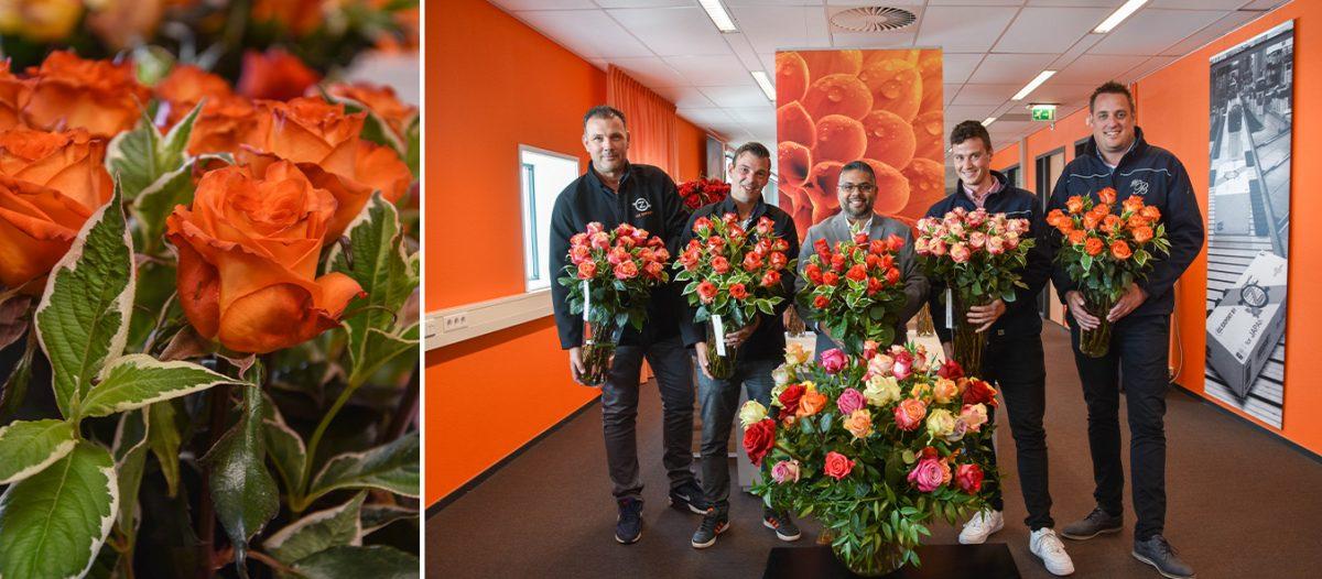 veleprodaja ruža