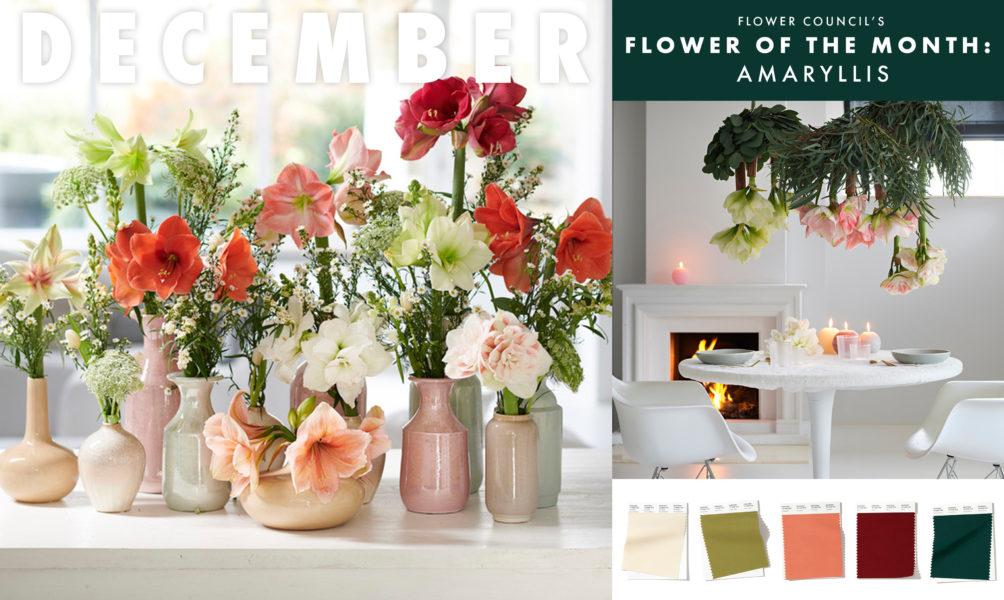 veleprodaja cvijeća rijeka